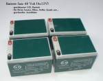 Batterien Set 48V 4x12V